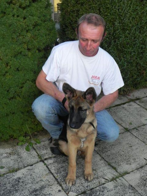 Tom le chien 1